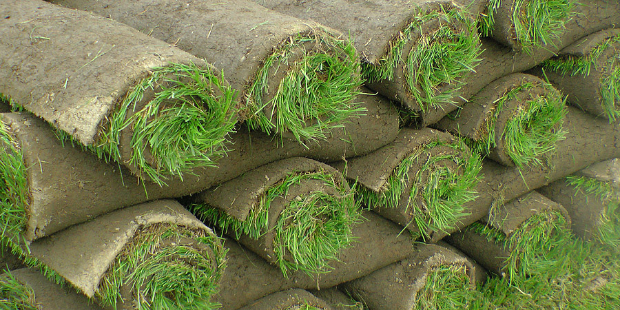 Turf and Sod Sales By the Pallet