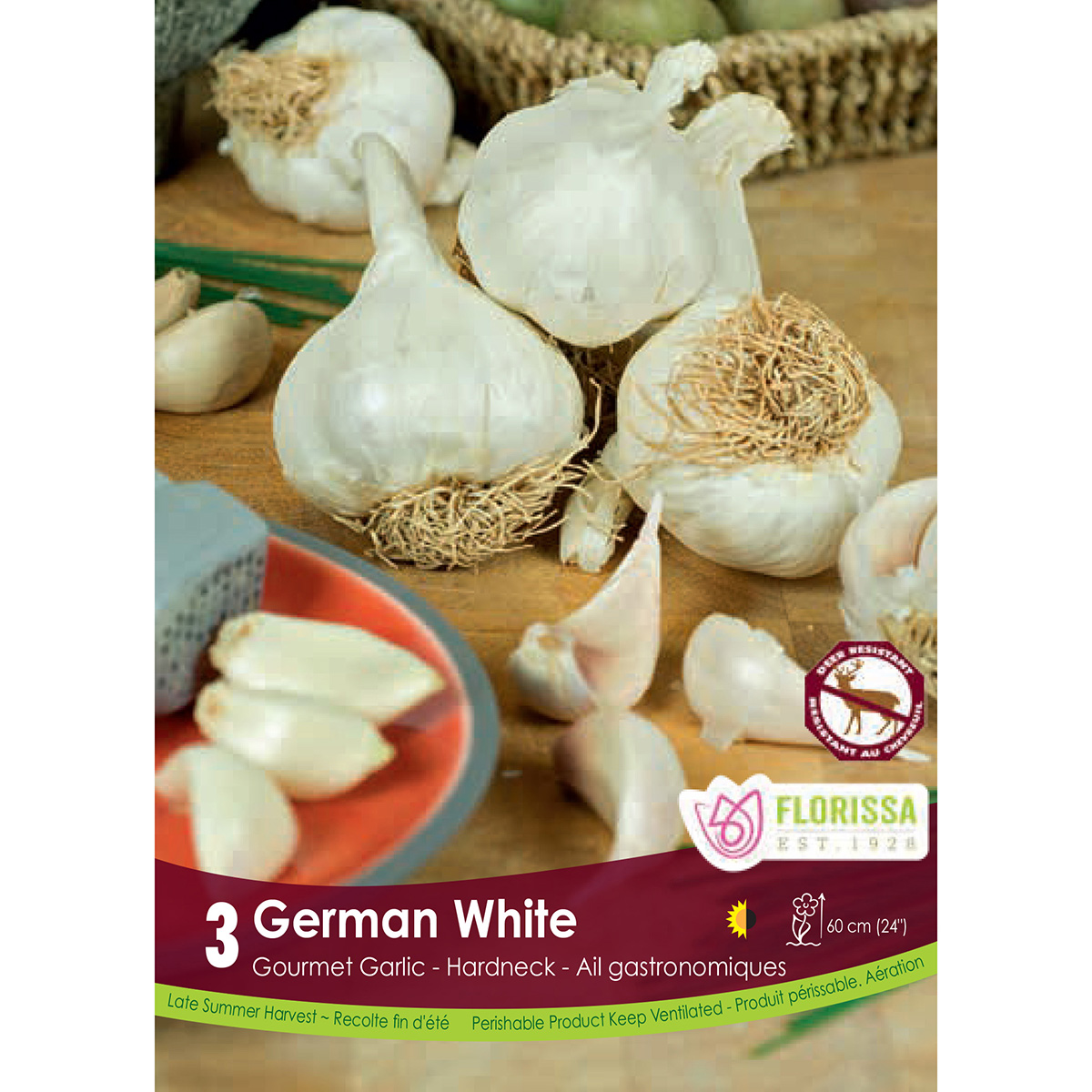 Garlic 'German White Hardneck' Bulbs
