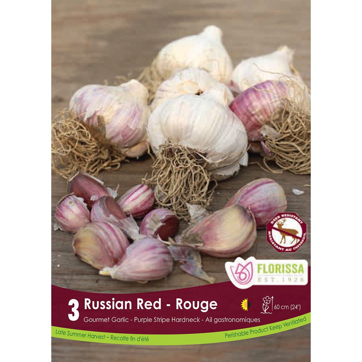 Garlic 'Russian Red' Bulbs 3Pk
