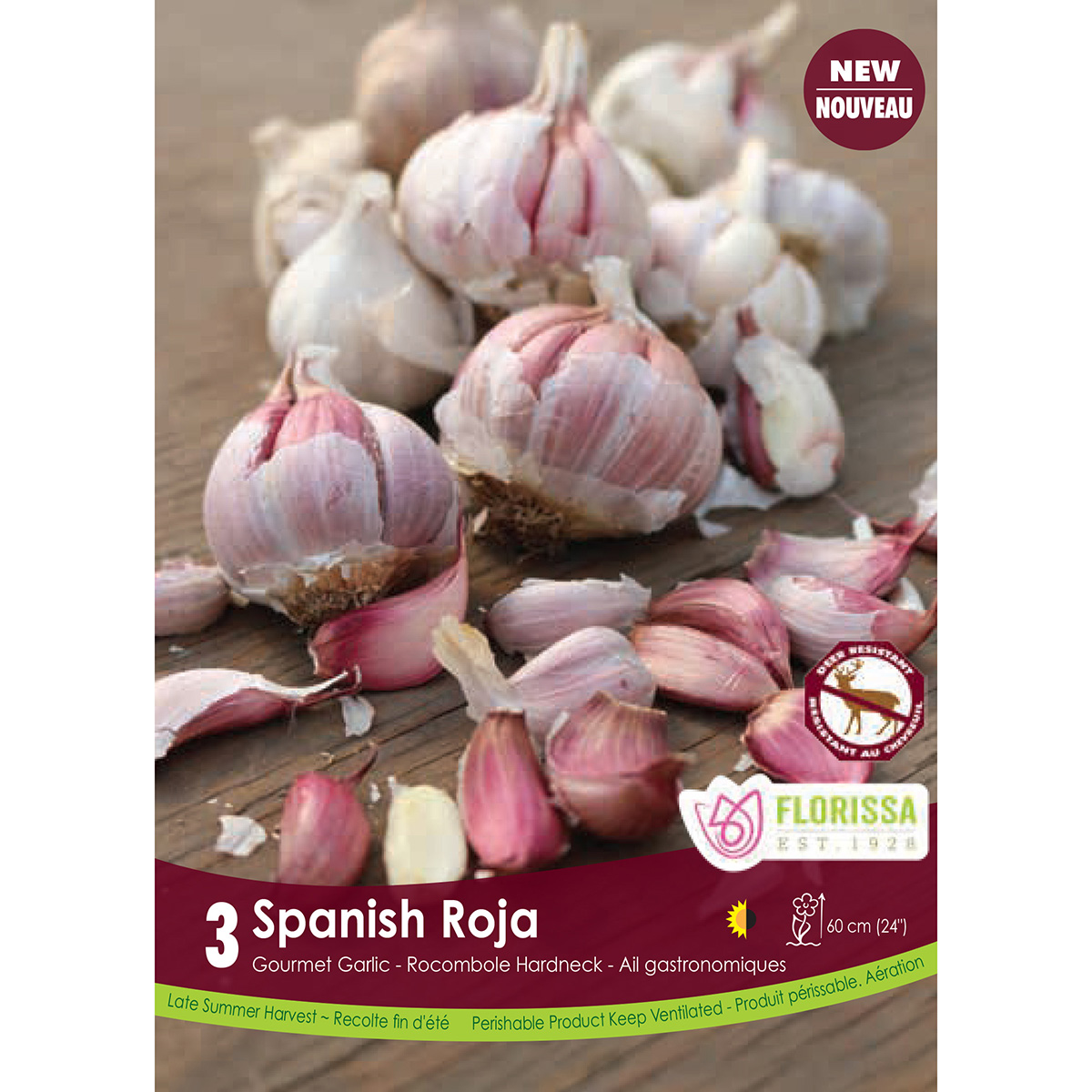 Garlic 'Spanish Roja' Bulbs