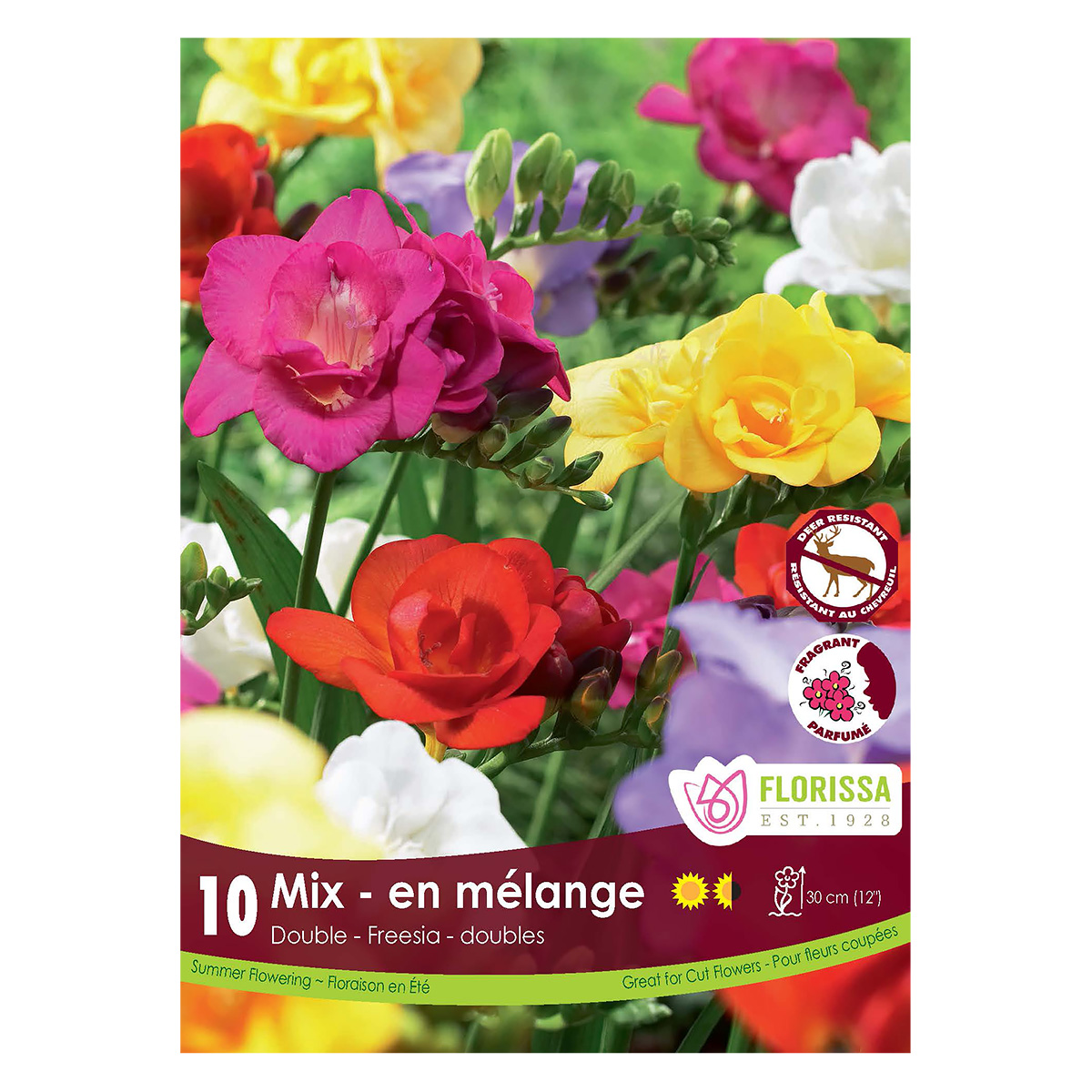 Freesia Double Mix Bulbs