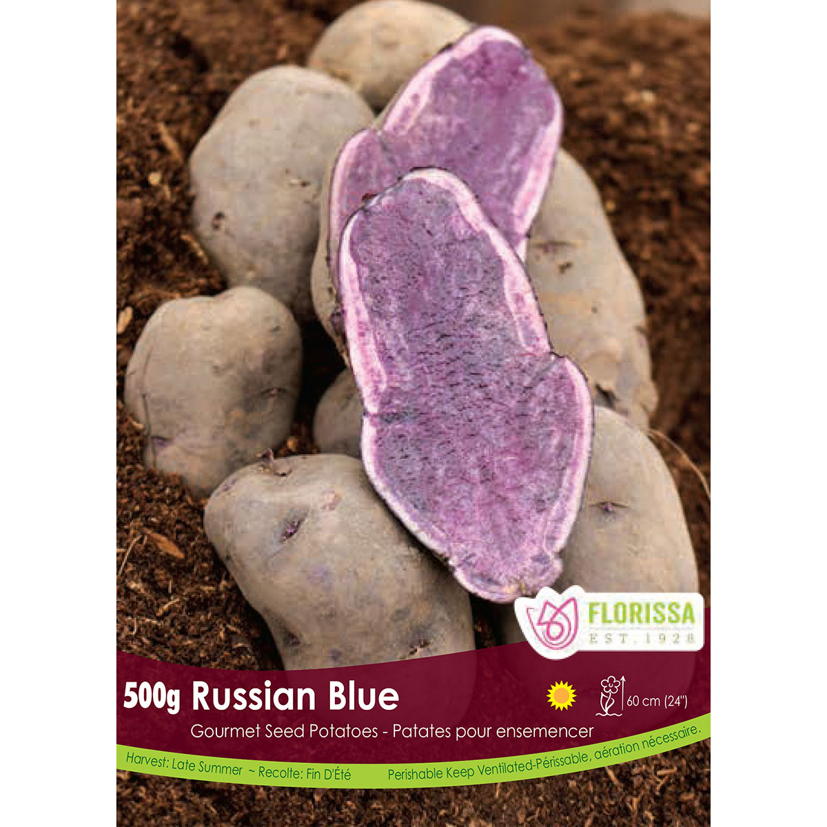 Gourmet Seed Potatoes 'Russian Blue'