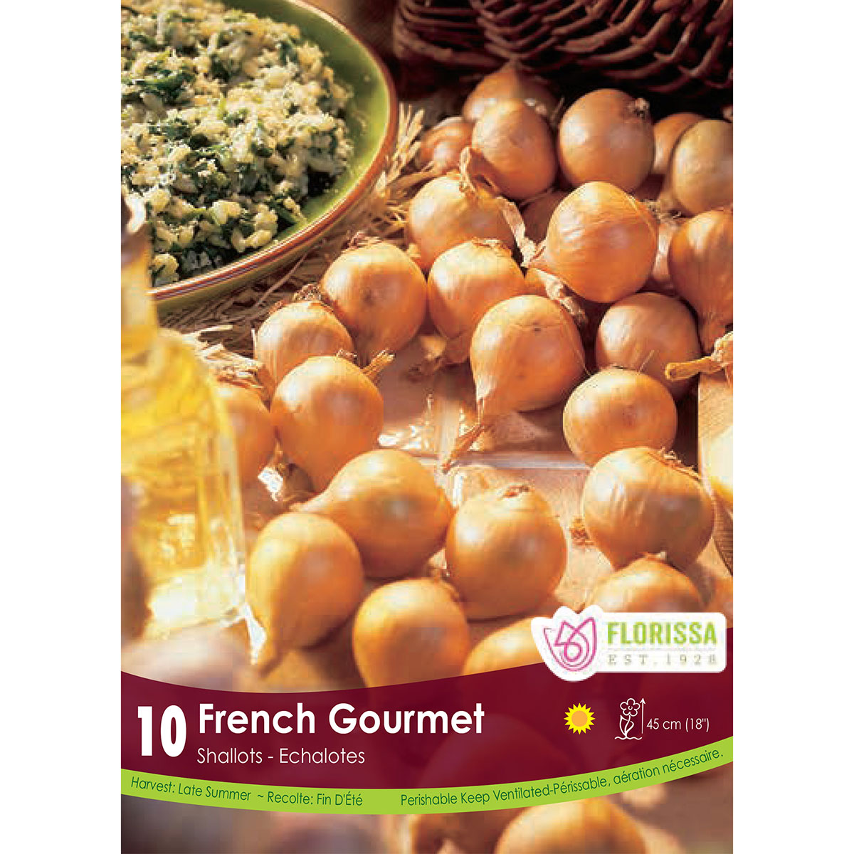 Shallots 'French Gourmet'