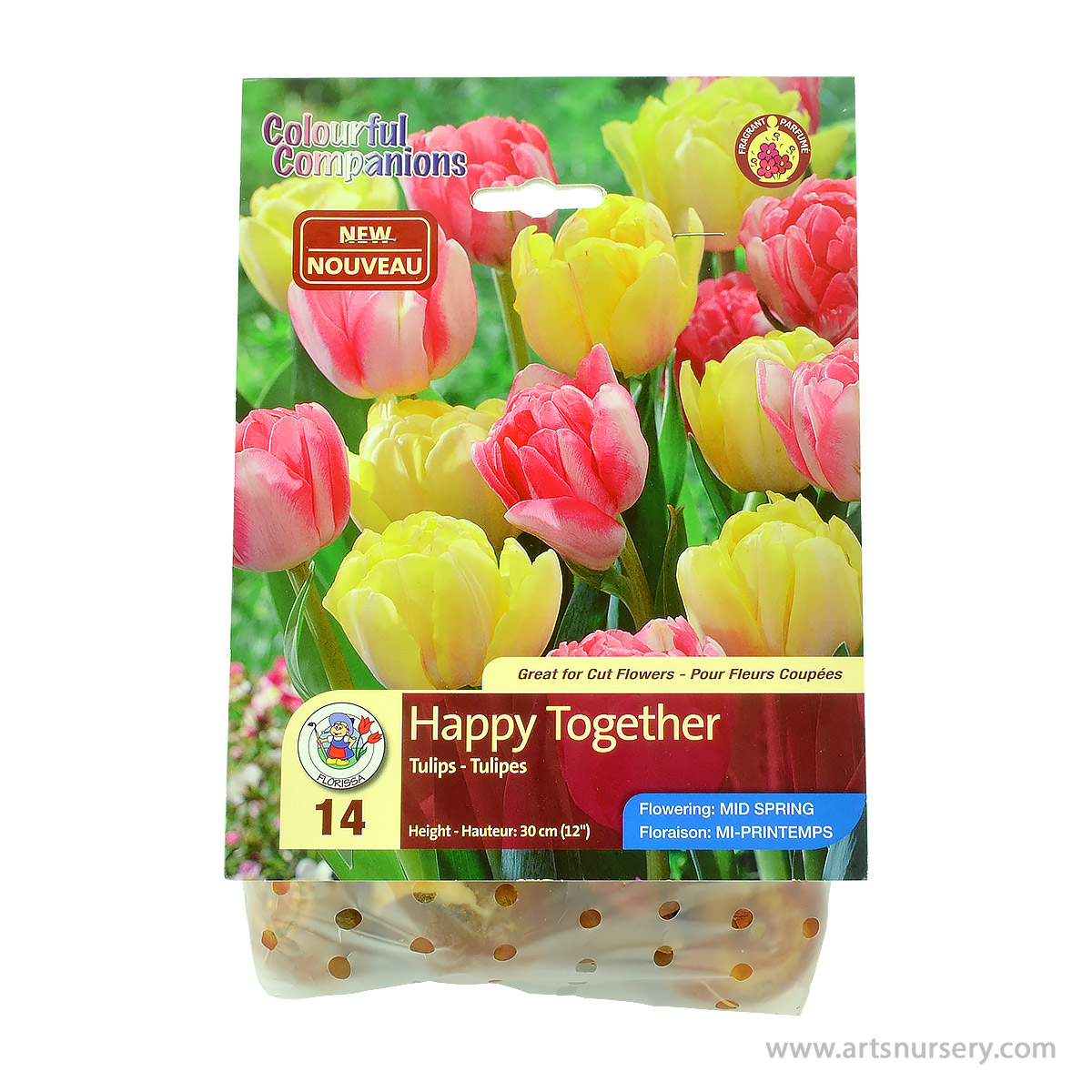 Tulip_HappyTogether.jpg