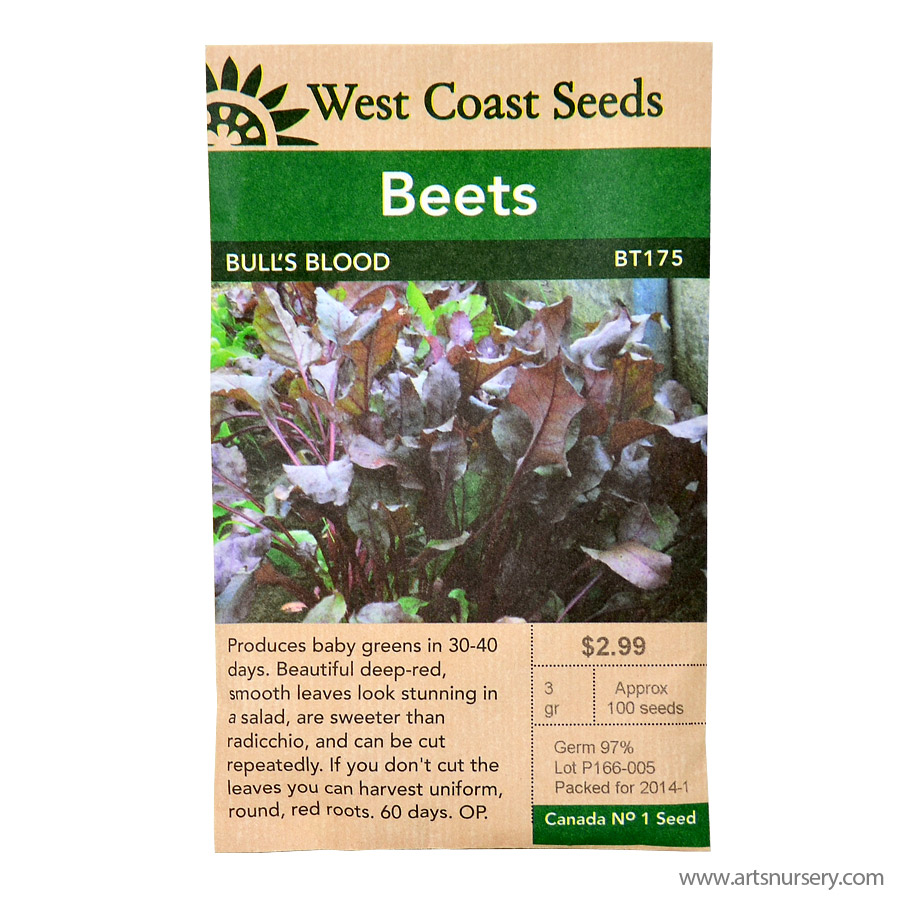 Beets Bulls Blood Seeds | West Coast Seeds