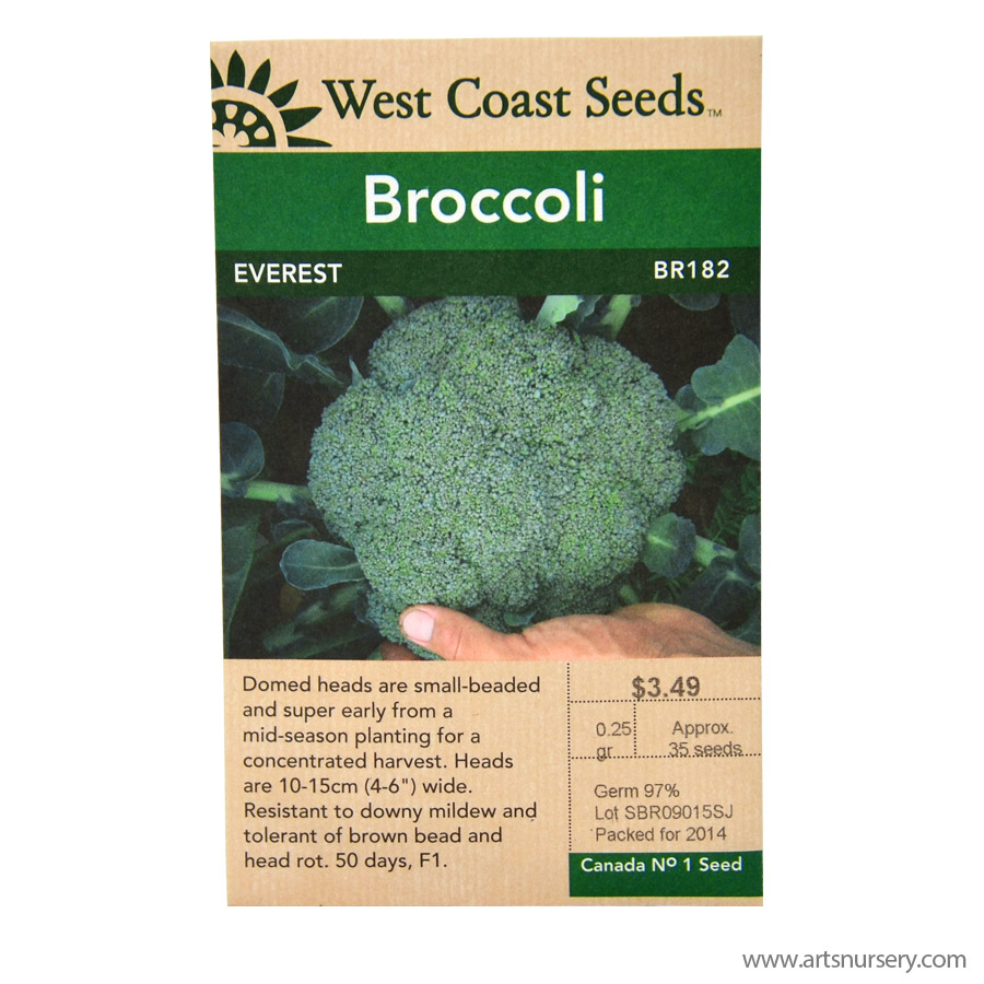 Broccoli Everest Seeds