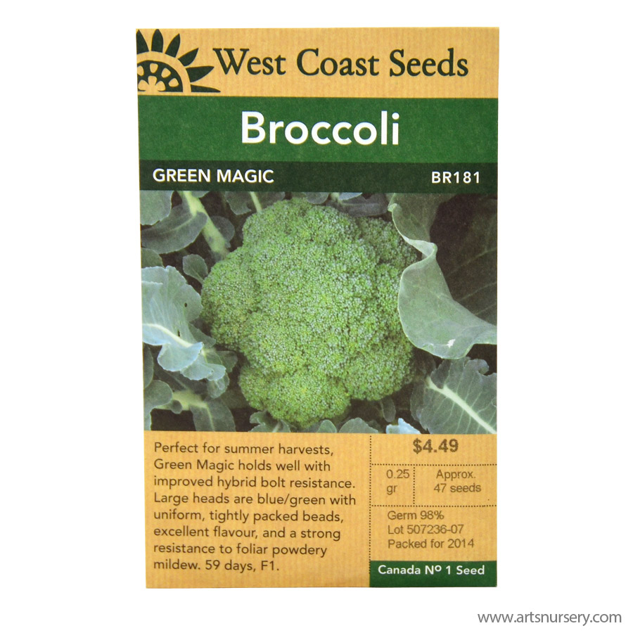 Broccoli Green Magic Seeds