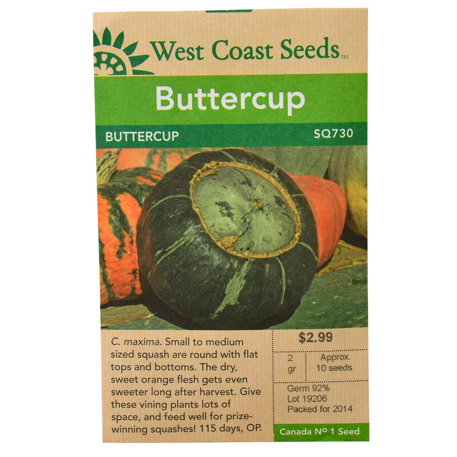 Squash Buttercup Seeds | West Coast Seeds