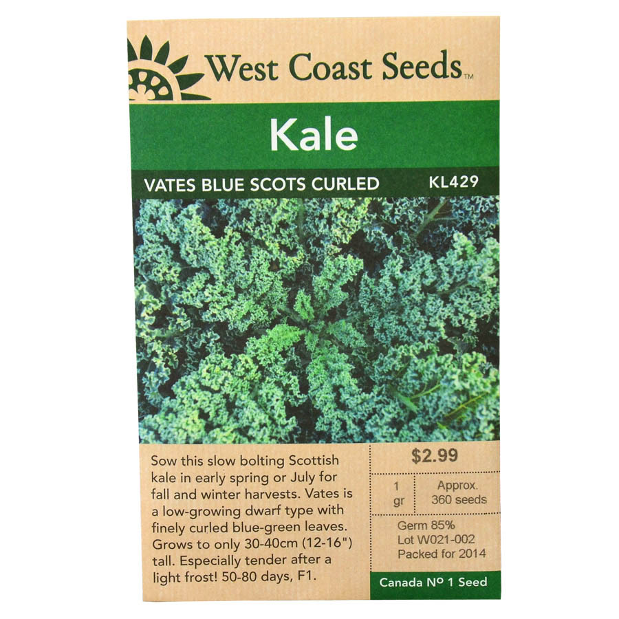 Kale Vates Blue Scots Curled Seeds | West Coast Seeds