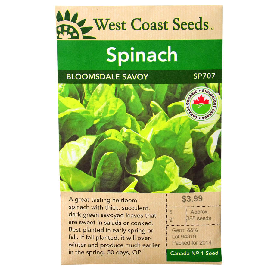 Spinach Bloomsdale Savoy Seeds | West Coast Seeds
