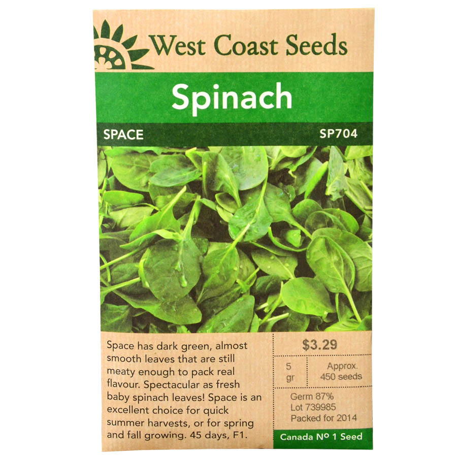 Spinach Space Seeds | West Coast Seeds