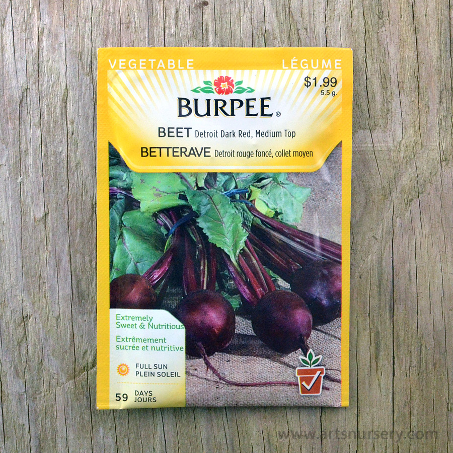 Detroit Dark Red Medium Top Beet Seeds Burpee