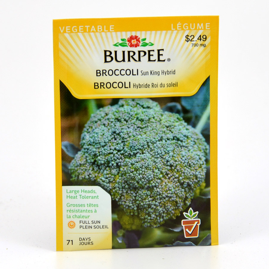 Burpee Broccoli Sun King Hybrid Seeds