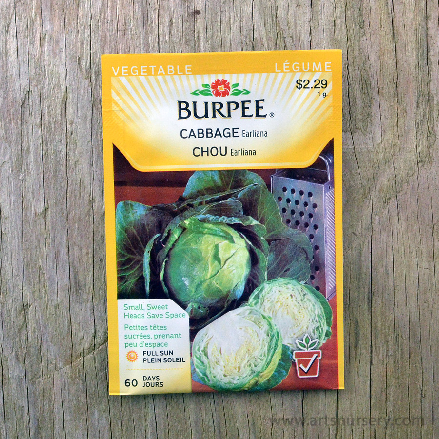 Earliana Cabbage Seeds Burpee