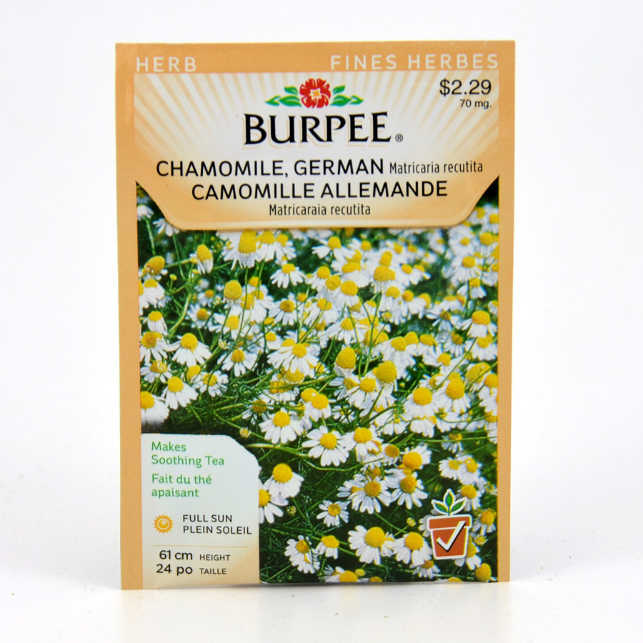 Burpee German Chamomile Seeds