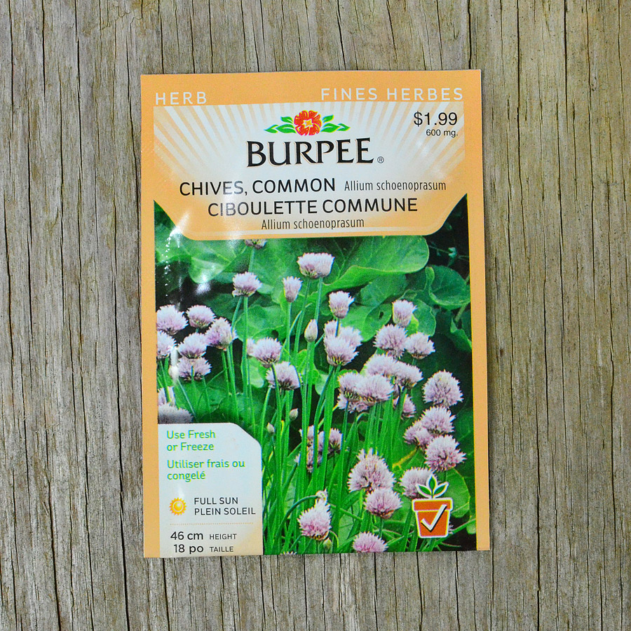 Common Chive Seeds Burpee