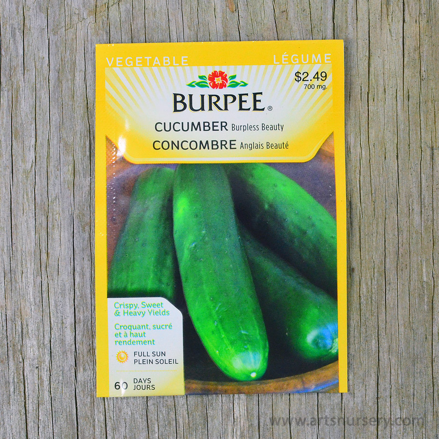 Burpless Beauty Cucumber Seeds Burpee