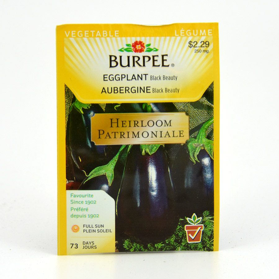 Burpee Black Beauty Eggplant Seeds