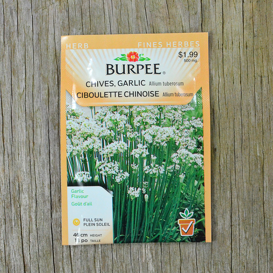 Garlic Chive Seeds Burpee