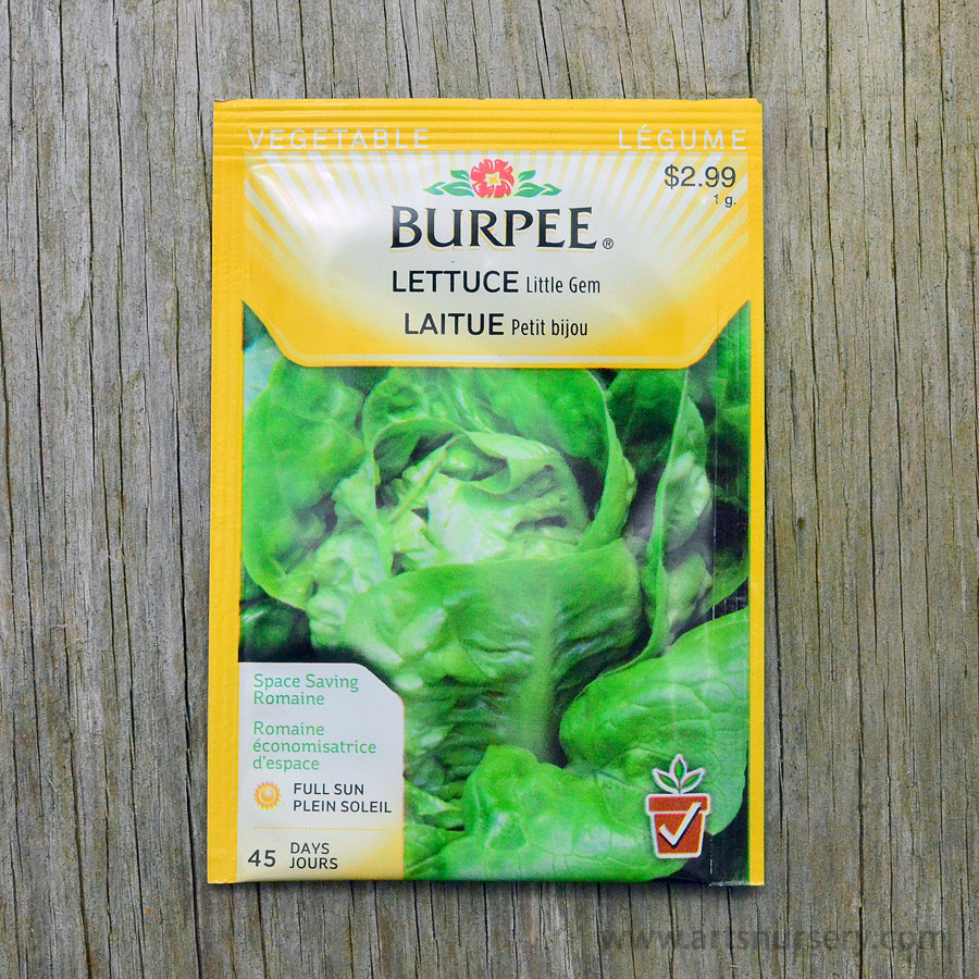 Little Gem Lettuce Seeds Burpee