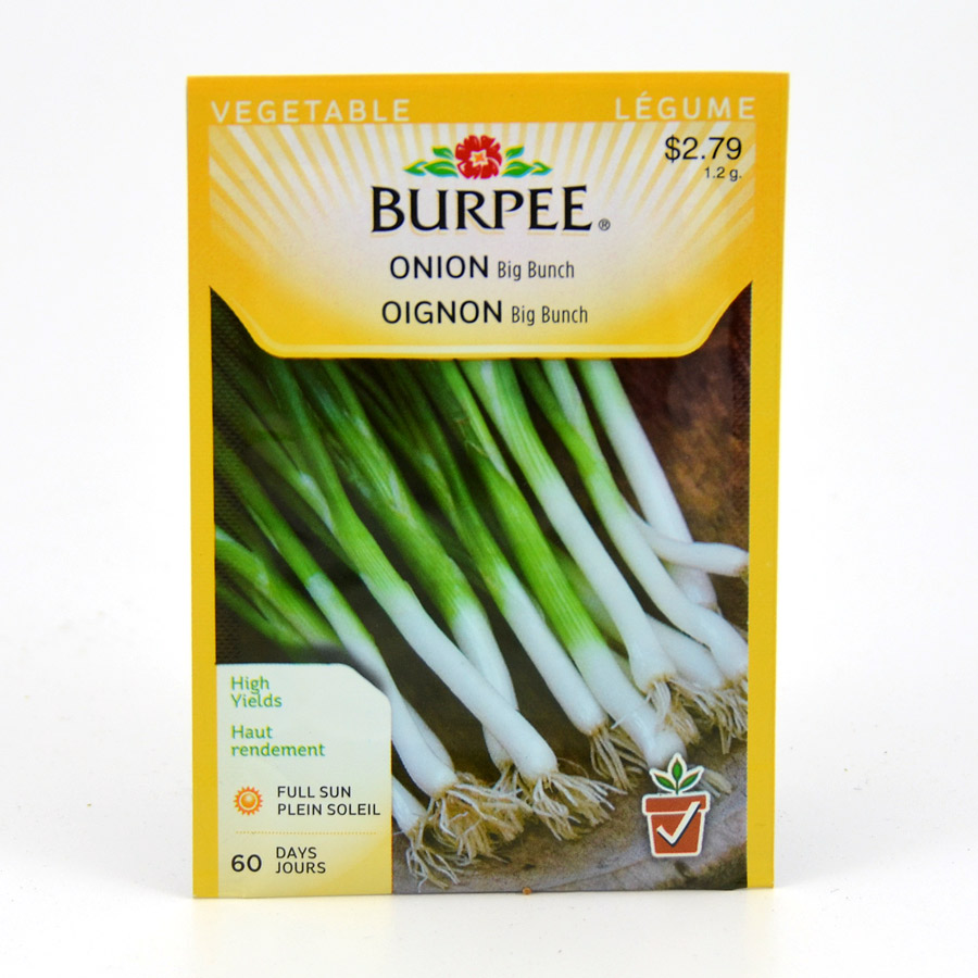 Burpee Onion Big Bunch Seeds