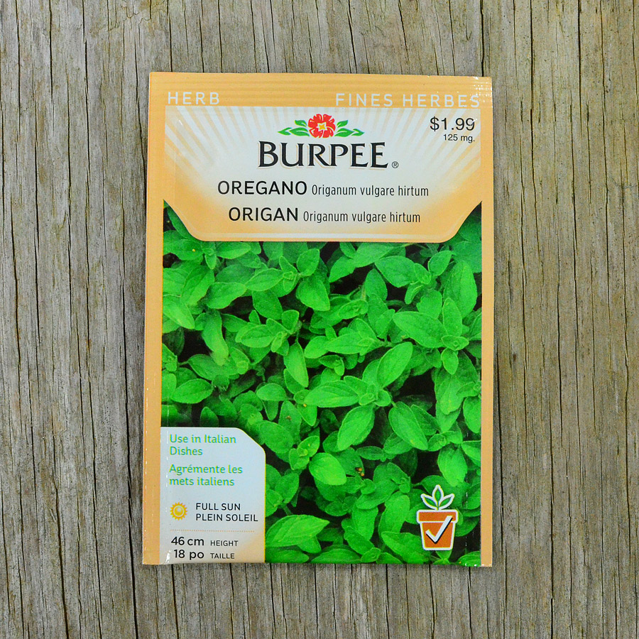 Oregano Seeds Burpee