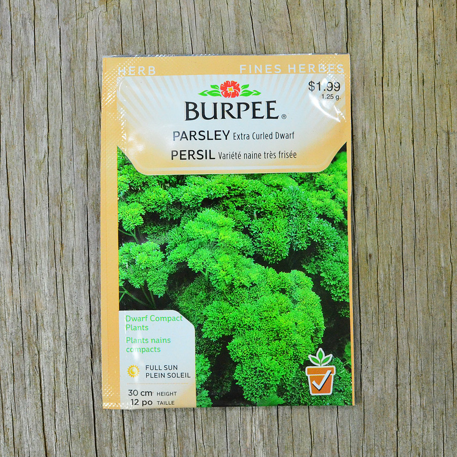 Extra Curled Dwarf Parsley Seeds Burpee