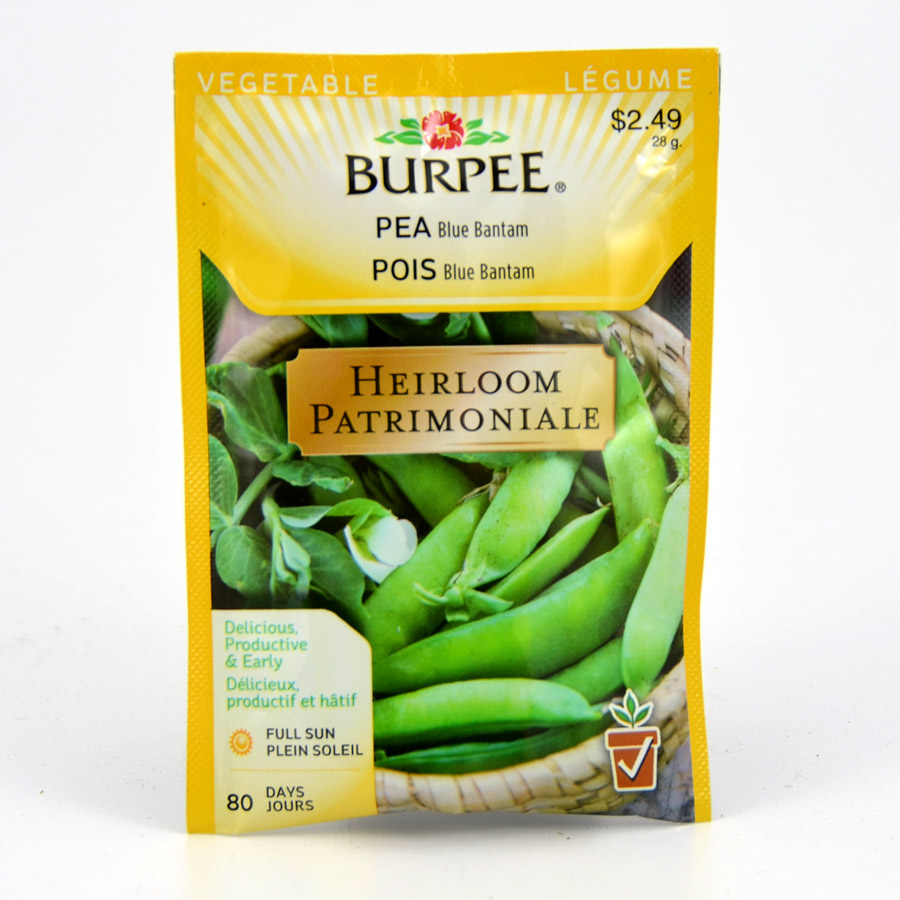 Burpees Blue Bantam Pea Seeds
