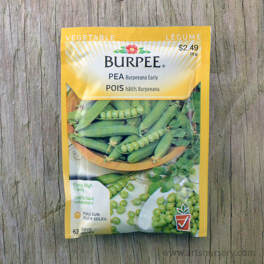 Burpeeana Early Pea Seeds Burpee