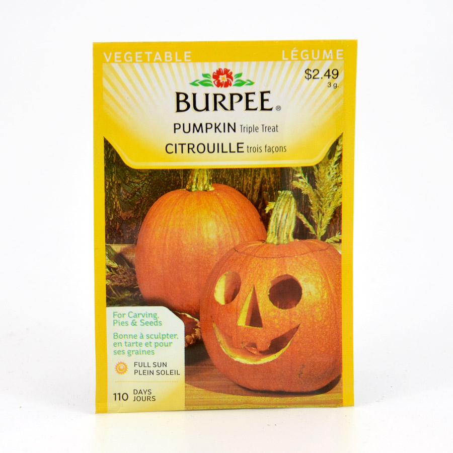 Burpee Pumpkin Triple Treat Seeds