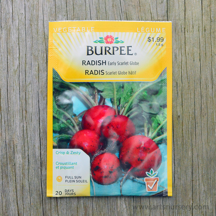 Early Scarlet Globe Radish Seeds Burpee