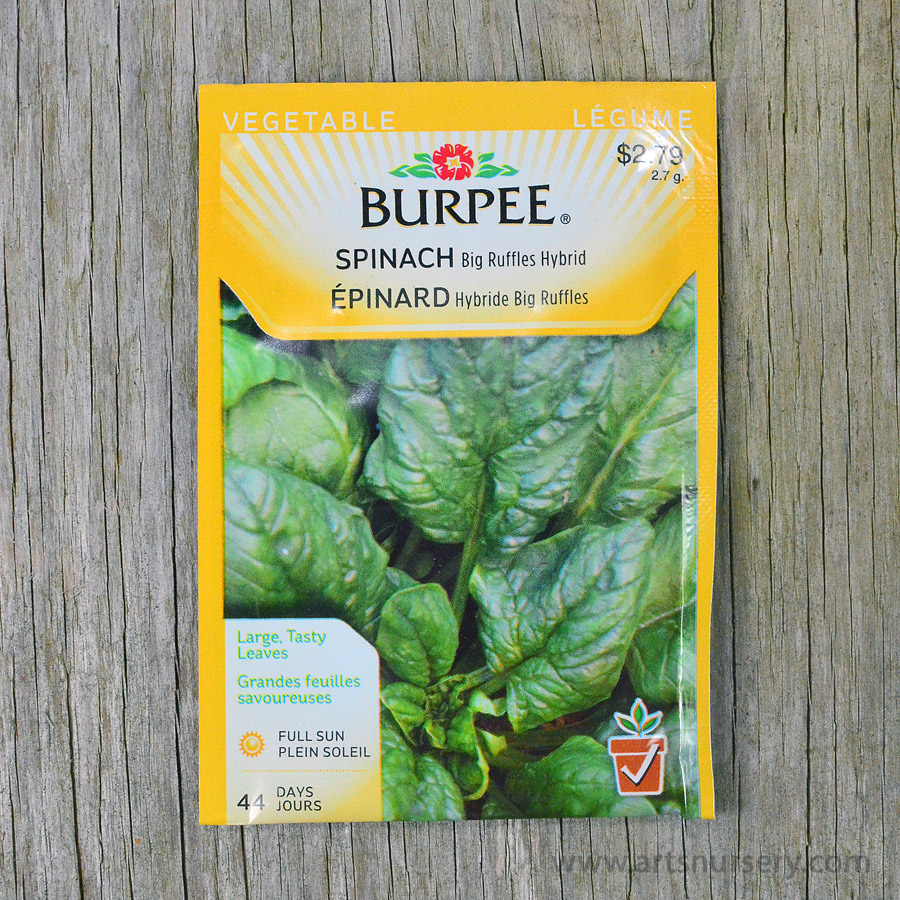 Big Ruffles Hybrid Spinach Seeds Burpee