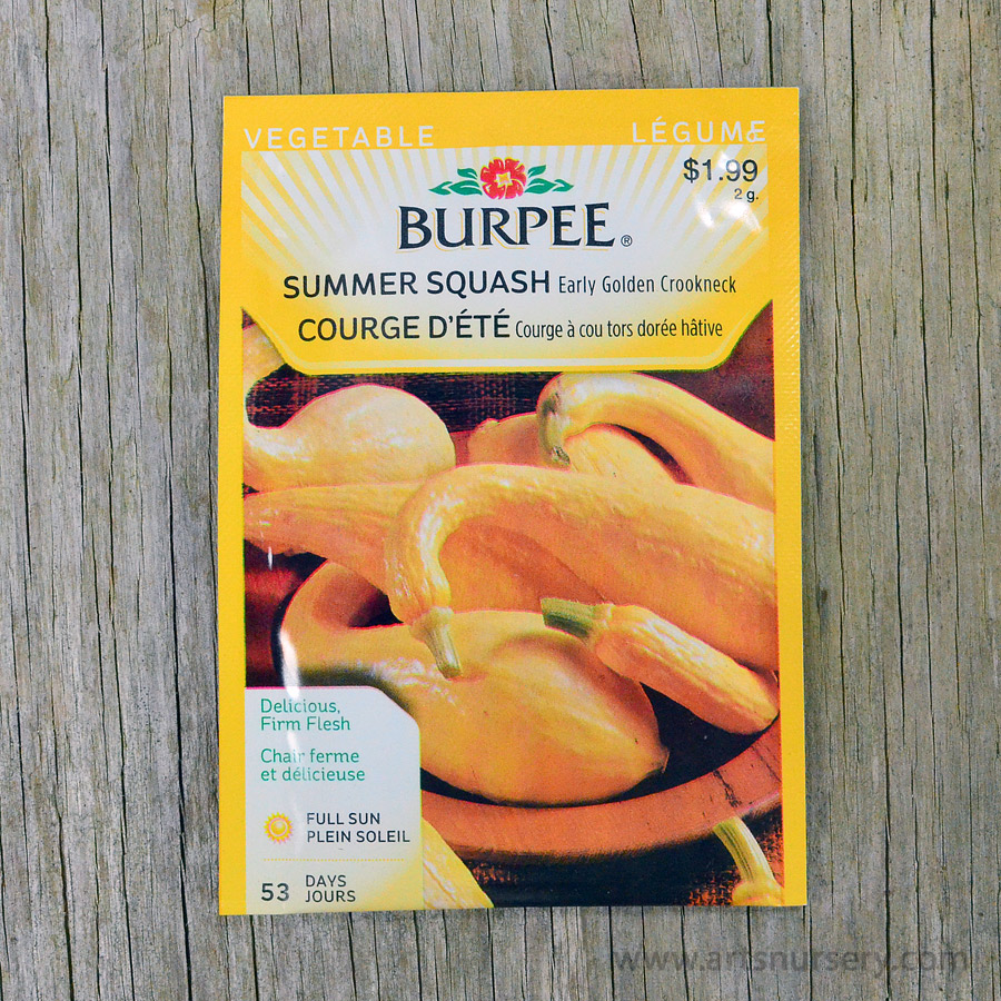 Early Golden Crookneck Summer Squash Seeds Burpee