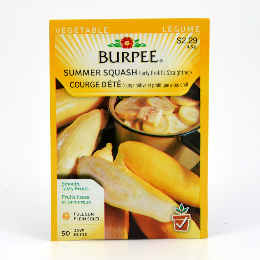Burpee Early Prolific Straightneck Summer Squash Seeds