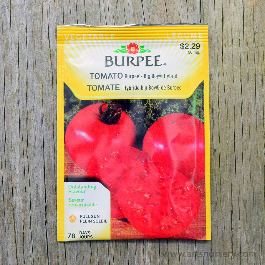 Burpees Big Boy Hybrid Tomato Seeds