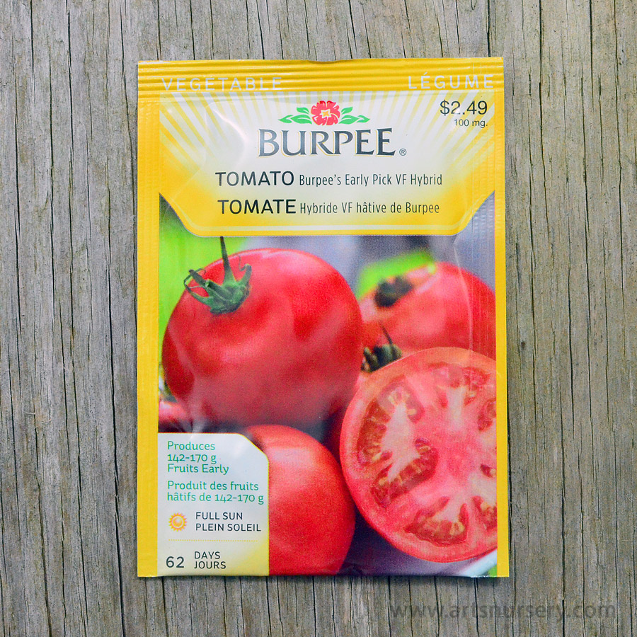 Burpees Early Pick VF Hybrid Tomato Seeds