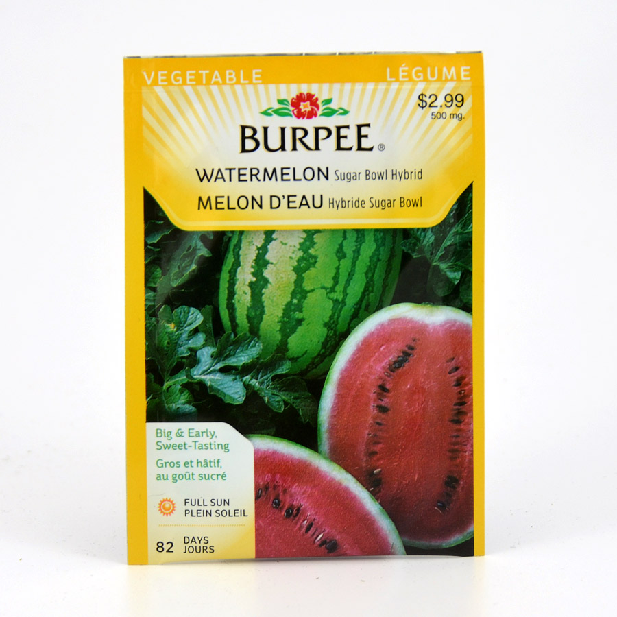 Burpee Sugar Bowl Hybrid Watermelon Seeds