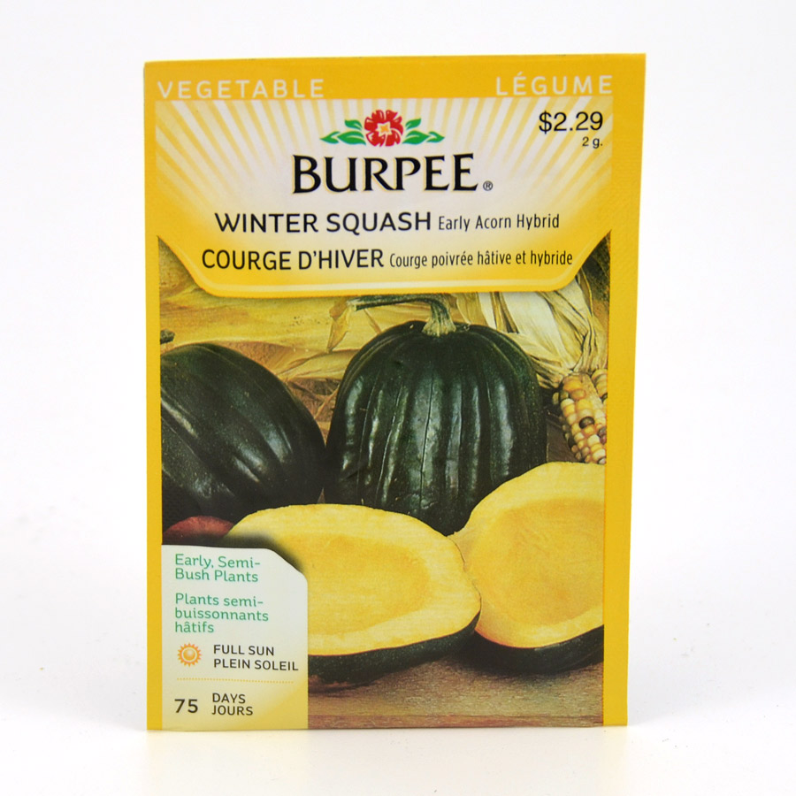 Early Acorn Hybrid Winter Squash Seeds Burpee