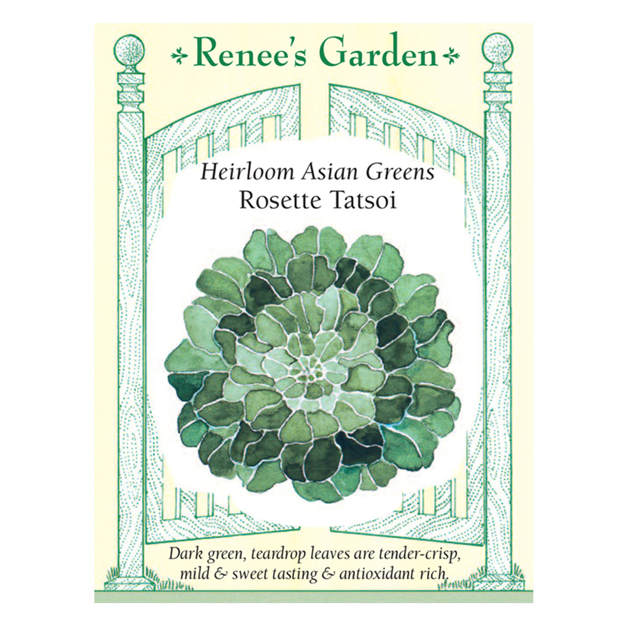 Rosette Tatsoi Heirloom Asian Greens Seeds