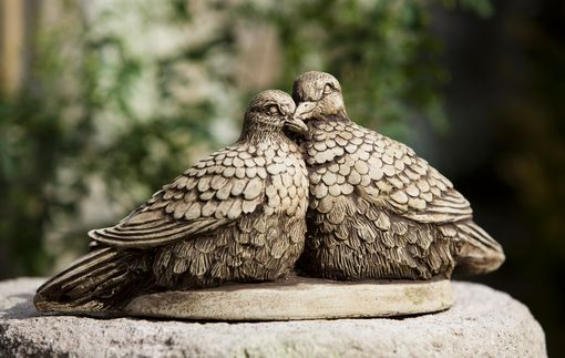 Campania - Lovebirds