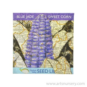 HVS_BlueJade_SweetCorn.jpg