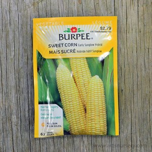 burpee_corn_earlysunglow.jpg